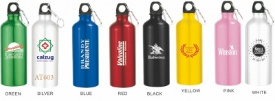 20 Oz. Aluminum Sports Water Bottle w/ Carabiner